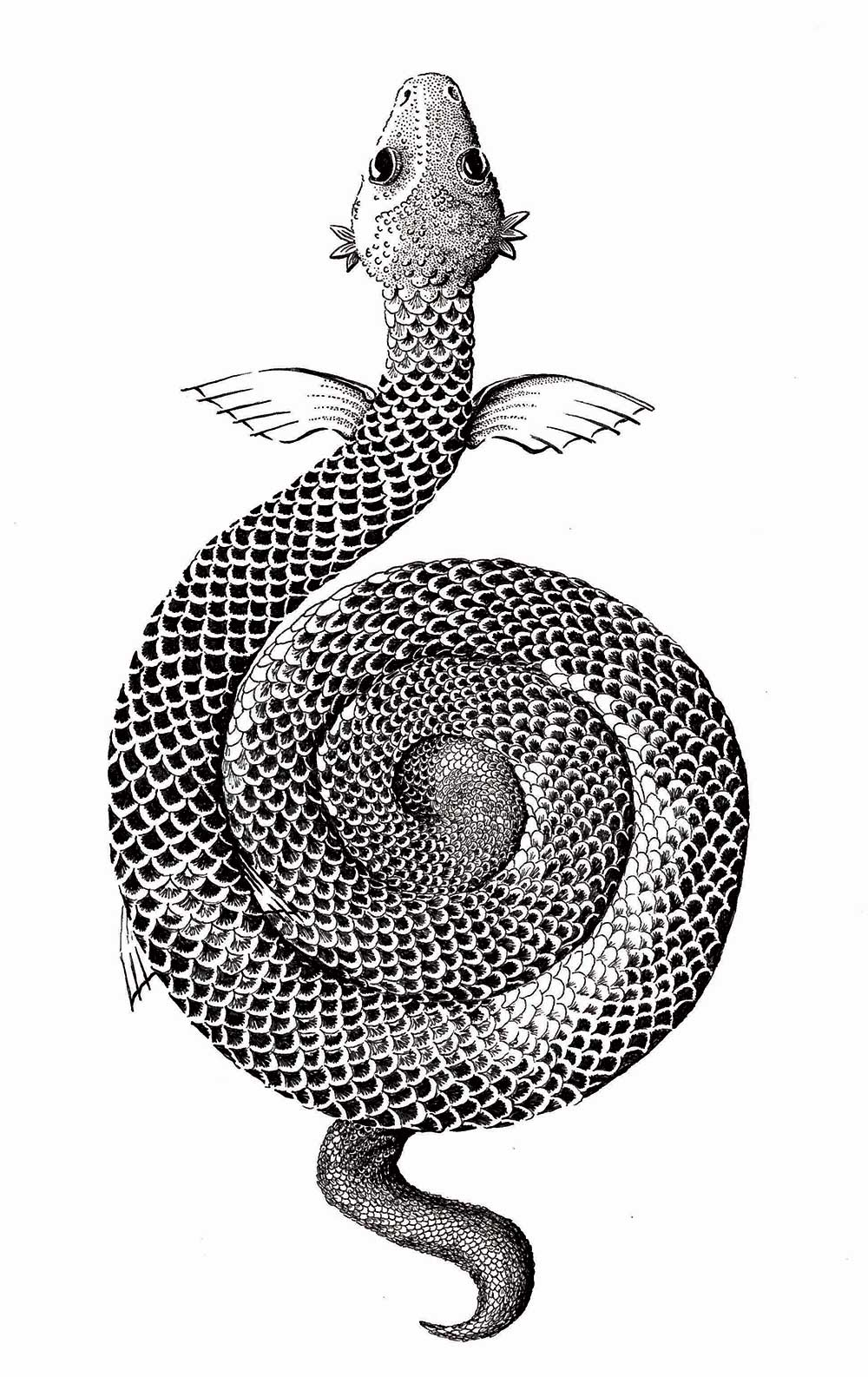 snake serpent pen and ink illustration for dark lane anthology by sally barnett