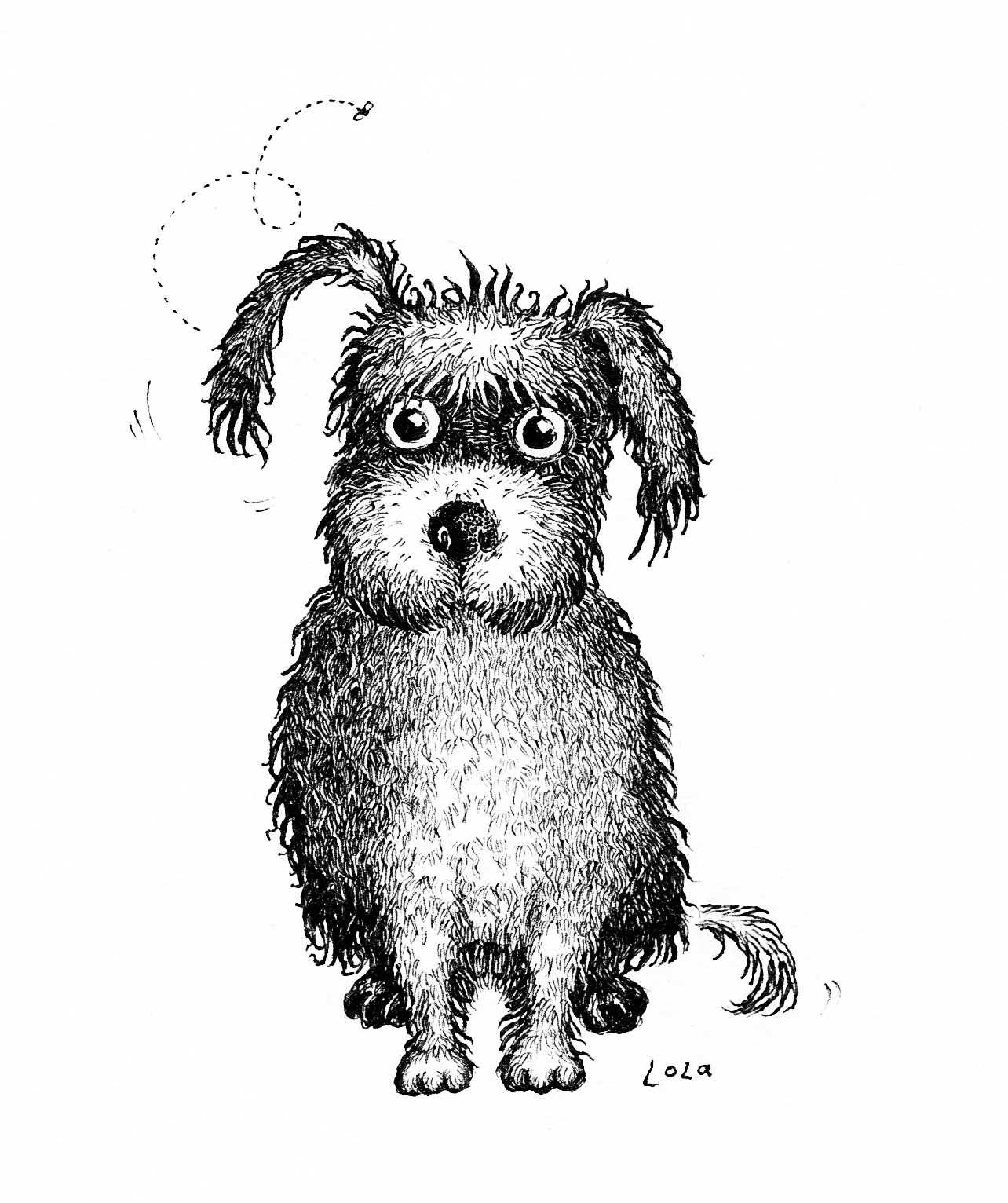 lola the dog pen and ink illustration by sally abrnett
