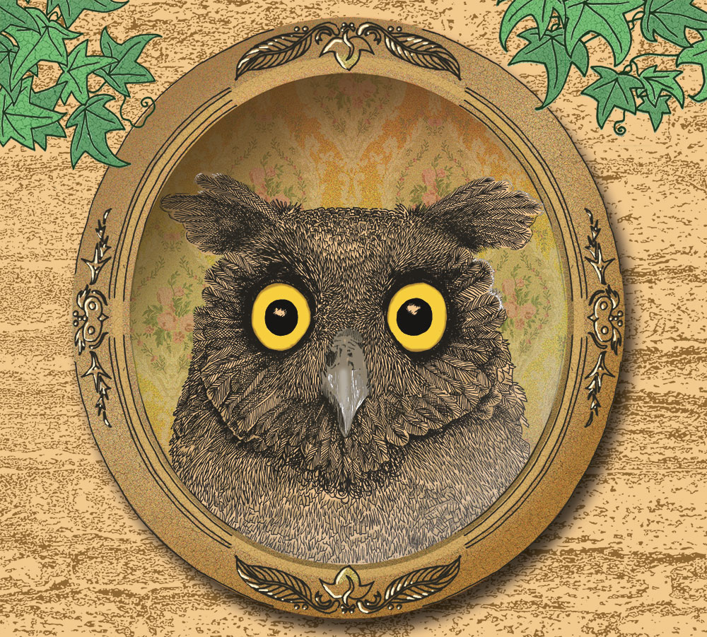 owl in the mirror album cover for get your head straight band illustrated by sally barnett