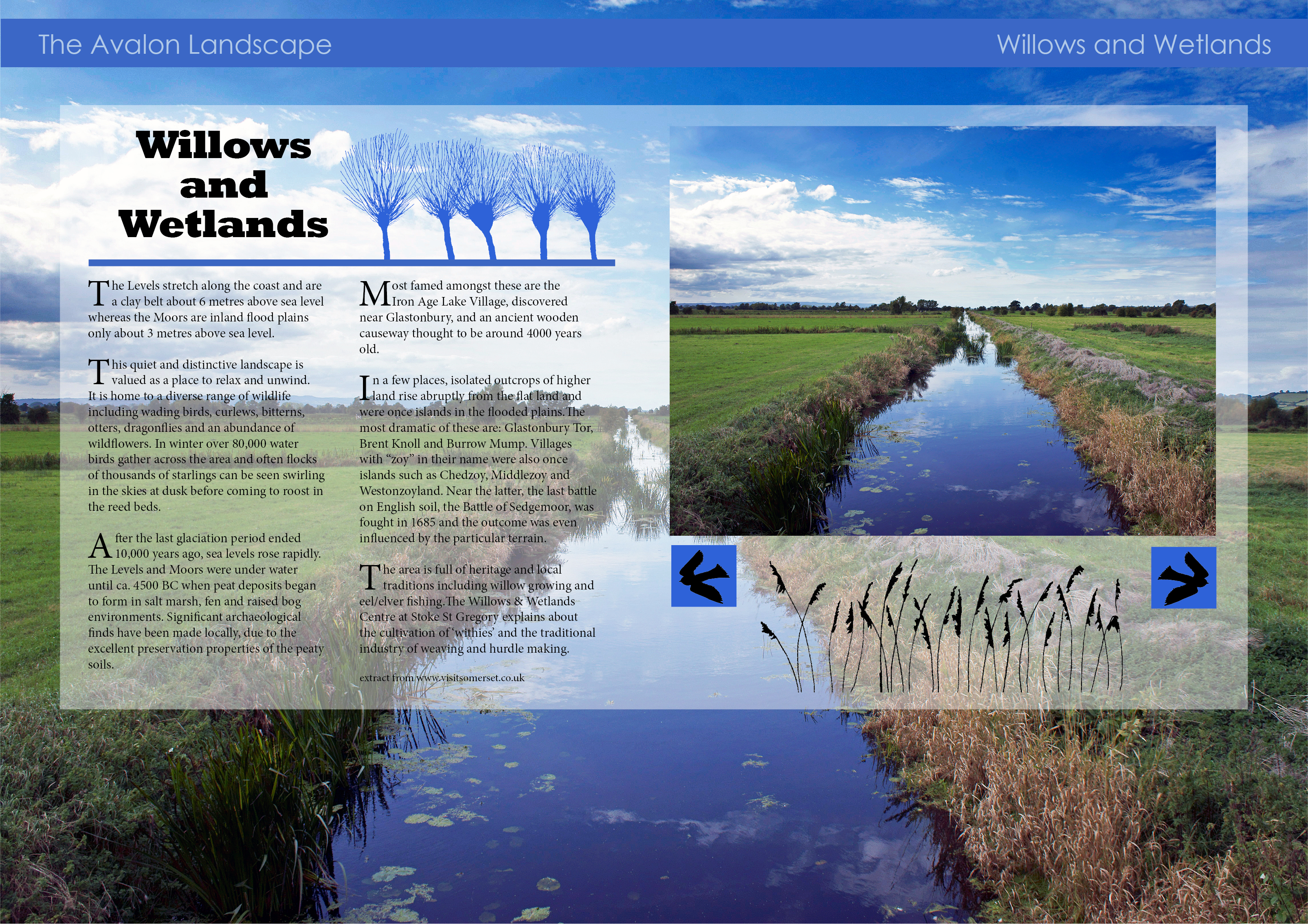 sally barnett photography and graphic design interactive magazine page of somerset levels rhynes willows and wetlands